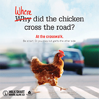 How Did The Chicken Cross The Road?
